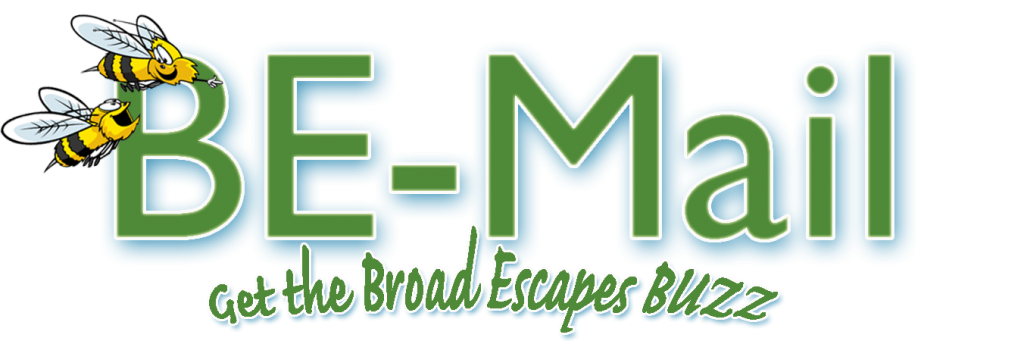 BEMail Logo with cartoon bees blue background